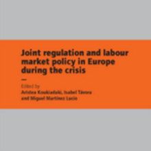 Cover of Joint regulation and labour market policy in Europe during the crisis